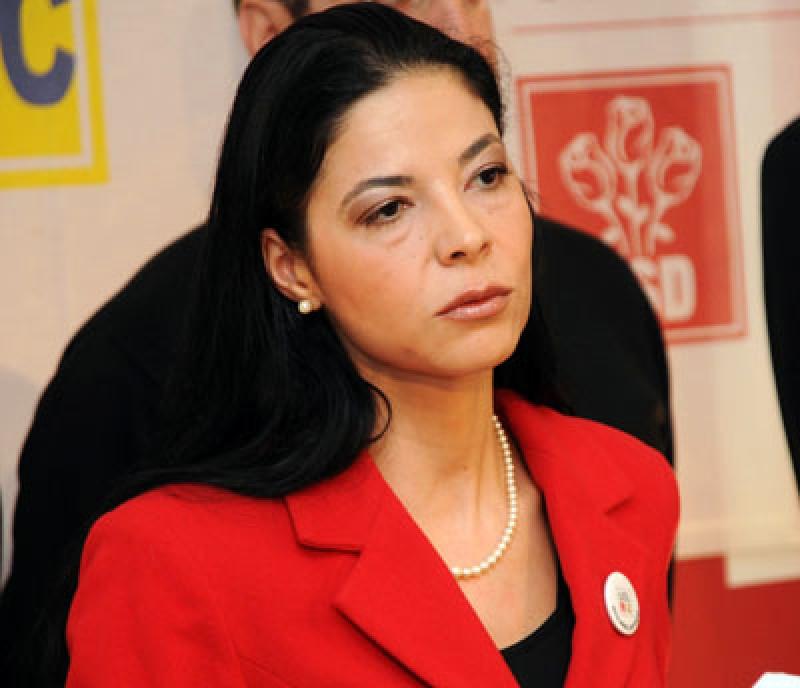 Ministrul Ana Birchall, interimar la Ministerul Justiției!