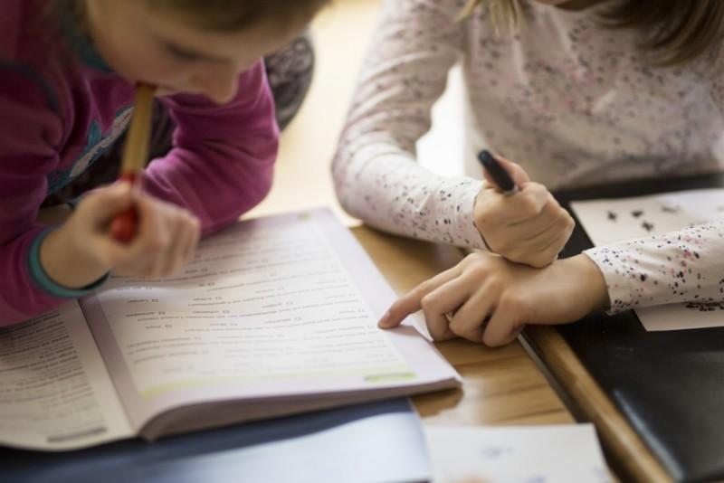 """Ministrul Educației anunță """"simplificarea"""" manualelor și programelor școlare"""