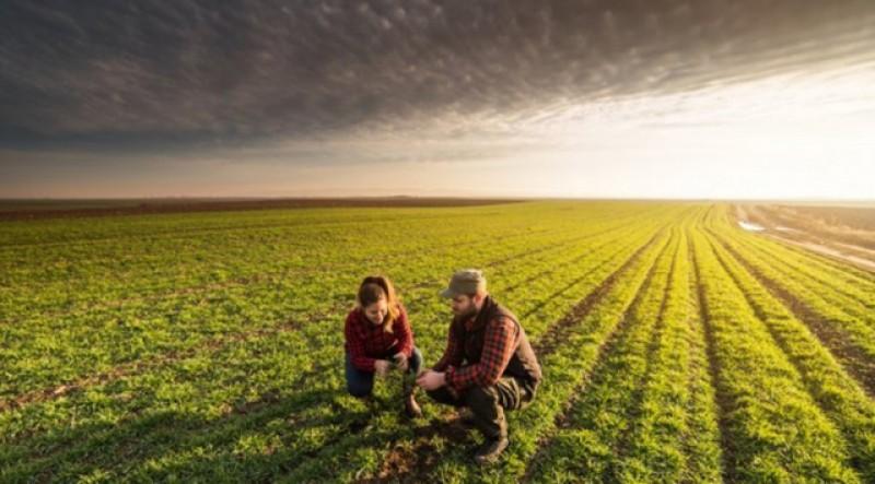 Ministrului Agriculturii: Fiecare palmă de pământ trebuie lucrată. Fermierii sănătoși trebuie să iasă la câmp
