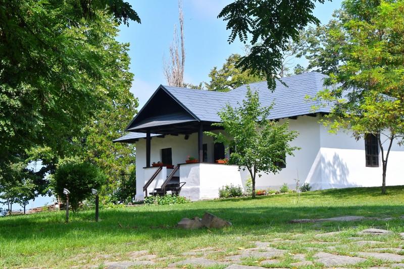 Muzeele, instituții emblematice ale culturii botoșănene