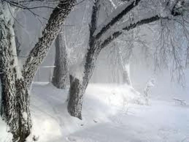 Ninge la Botoșani: Au căzut zăpezi abundente peste bunul simţ