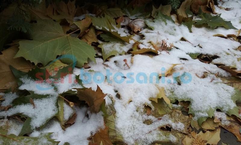 Ninsori răzleţe anunţate de meteorologi pentru zilele următoare la Botoşani