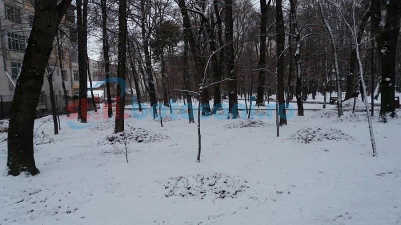 Ninsorile încă întârzie la Botoşani. Estimări meteorologice