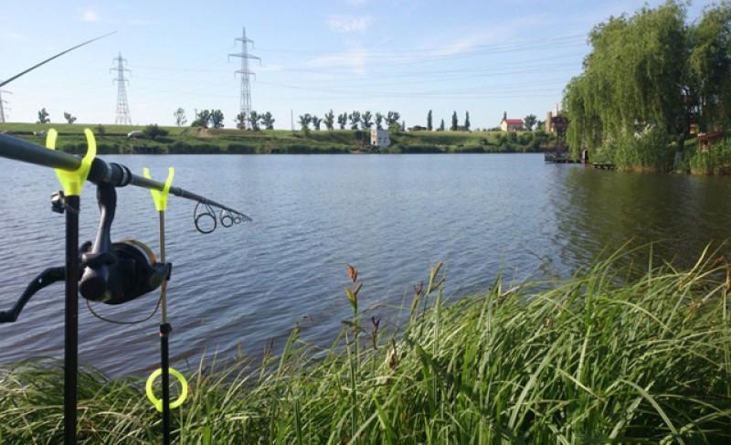Noi reguli pentru pescari: pe baltă, toată lumea trebuie să tacă ca peștele