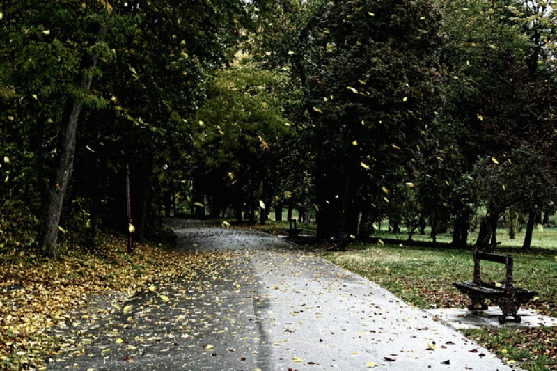 Noiembrie cu frig și ploi. Botoșani, cel mai friguros județ: mercurul nu urcă peste 6 grade!