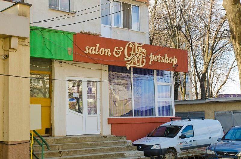 NOU în Botoșani! S-a deschis primul salon de cosmetică felină și canină