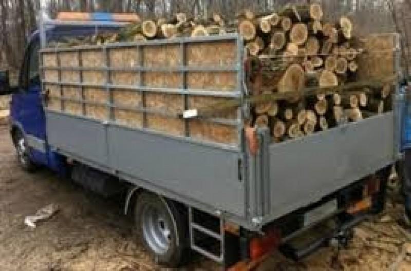 Nu face lemnul cât... paguba!