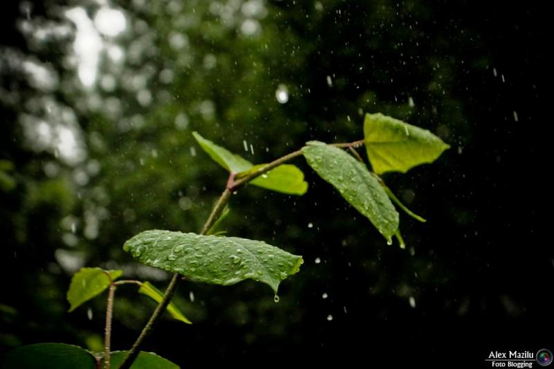 Nu lăsați umbrelele acasă! Intrăm în weekend cu ploi și timp răcoros