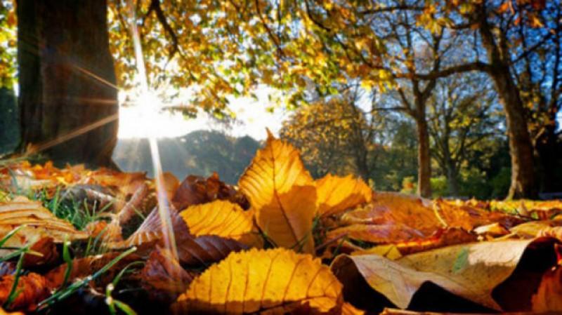 Octombrie și noiembrie se păstrează cu temperaturi atipic de mari!