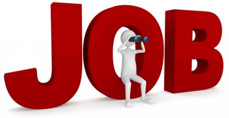 Ofertă bogată de locuri de muncă, în această săptămână, pentru botoșăneni!