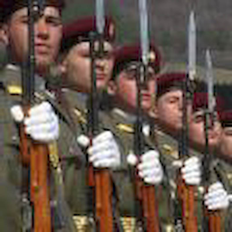 Oficialitatile cinstesc Ziua Armatei Romane