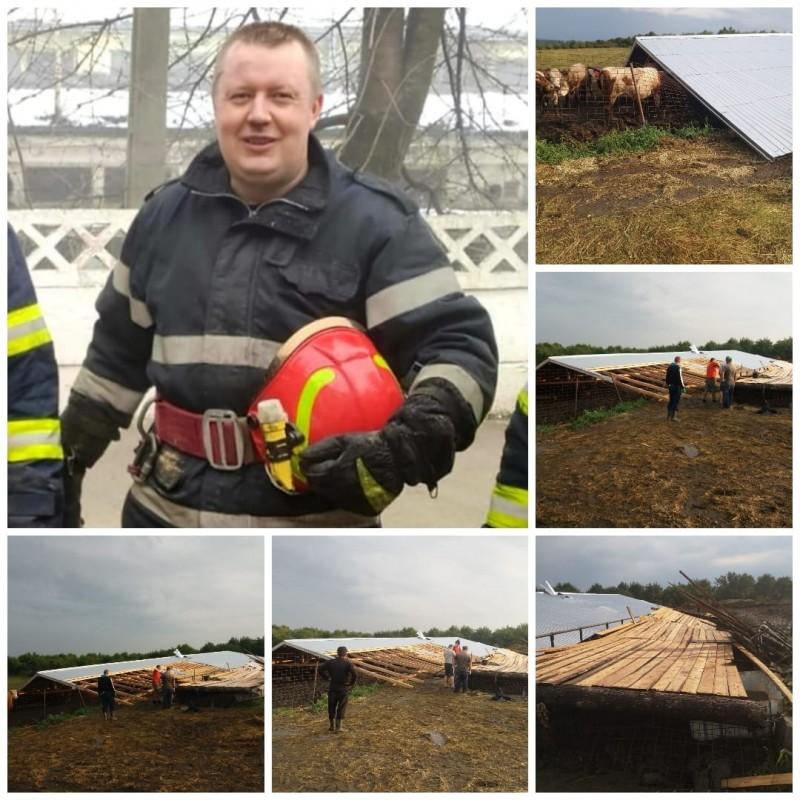 Omul din spatele uniformei. 14 animale salvate de un pompier aflat în concediu de odihnă