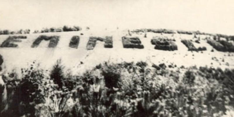 """Pădurea Eminescu, """"cea mai straşnică fortificaţie"""" ridicată de Divizia 20 Infanterie!"""