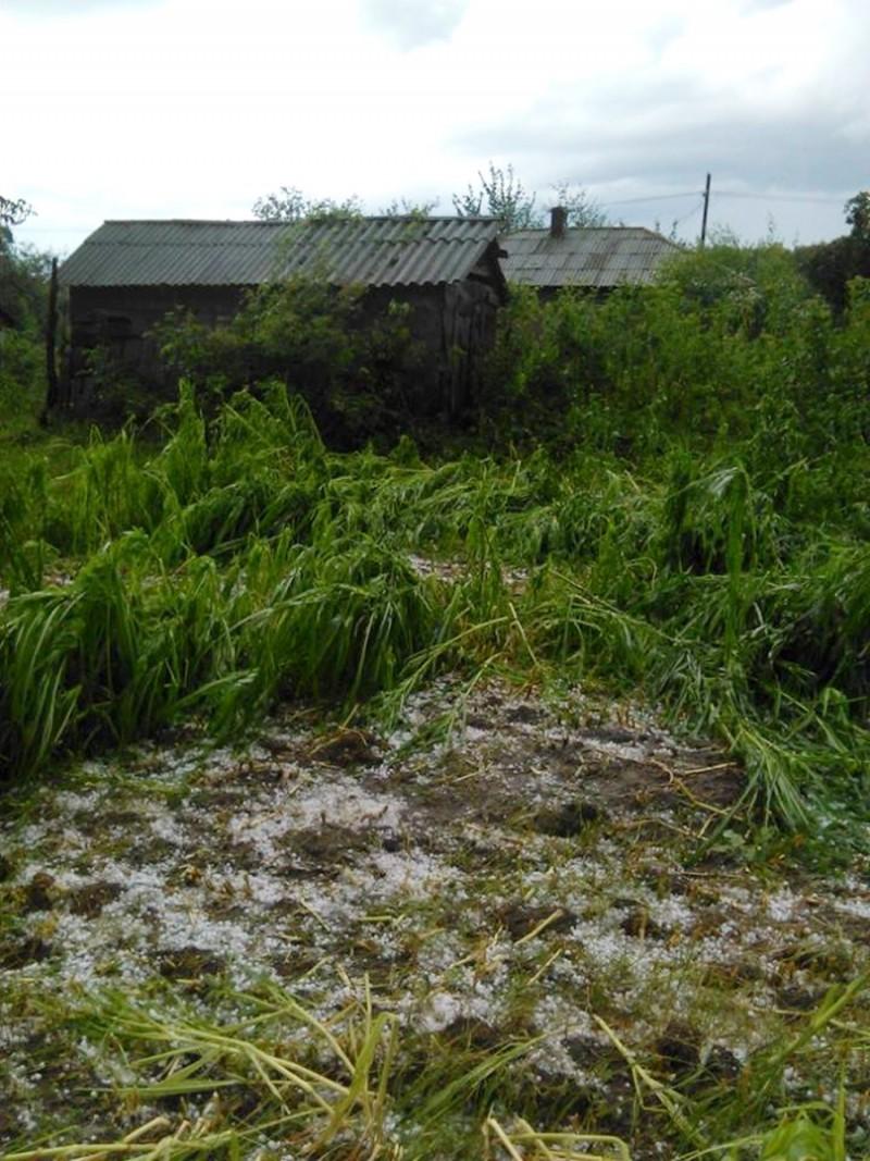 Pagube de sute de mii de lei cauzate de furtuni şi vijelii în trei comune din Botoşani
