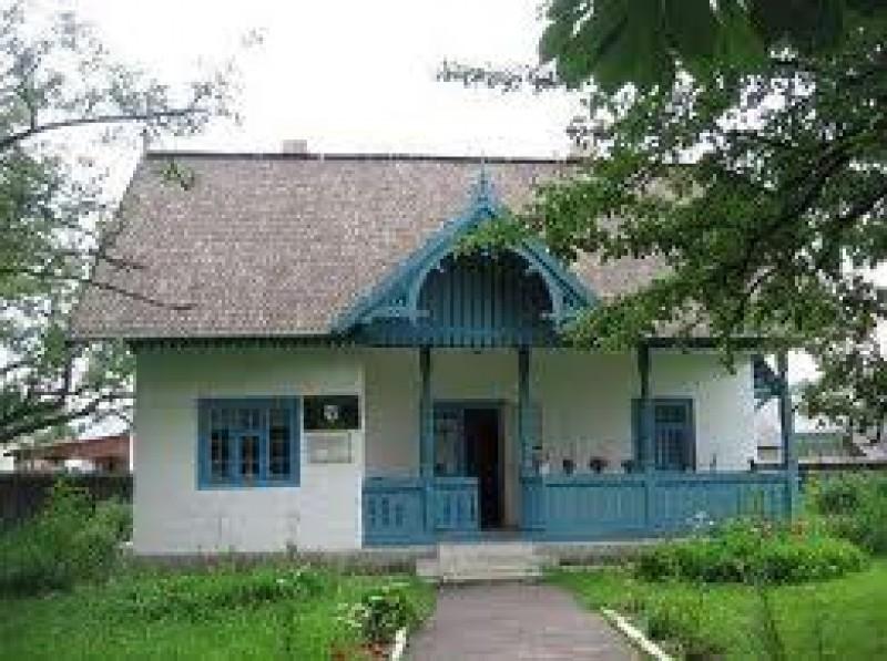 """Pana pe 26 august 2013 se trimit poemele pentru Festivalul Național de Poezie """"Nicolae Labiș"""", ediția a XLV-a"""