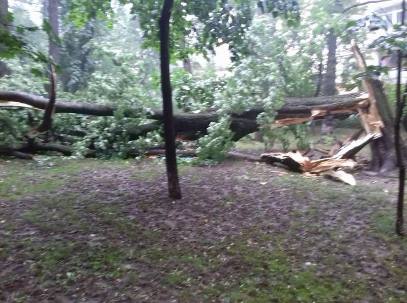 Parcul Eminescu, în urma furtunii de joi! FOTO