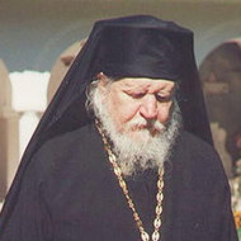 Părintele Teofil Părăian, Monahul bucuriei, a încetat din viaţă - VIDEO
