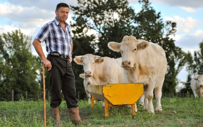 Parlamentarii au găsit soluția prin care să ajute producătorii agricoli români: le acordă o Zi Națională, cu manifestări educativ-științifice