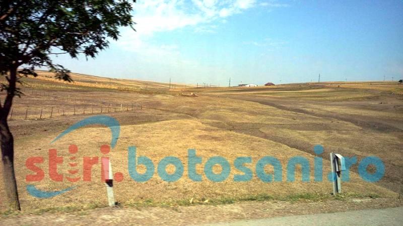 Parlamentarii PSD Botoșani solicită primului ministru să intervină urgent pentru combaterea secetei din județ