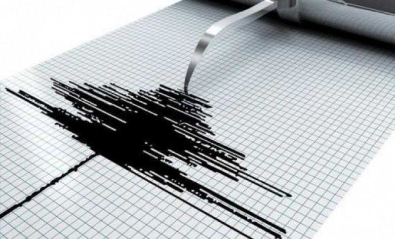 Patru cutremure noaptea trecută în România
