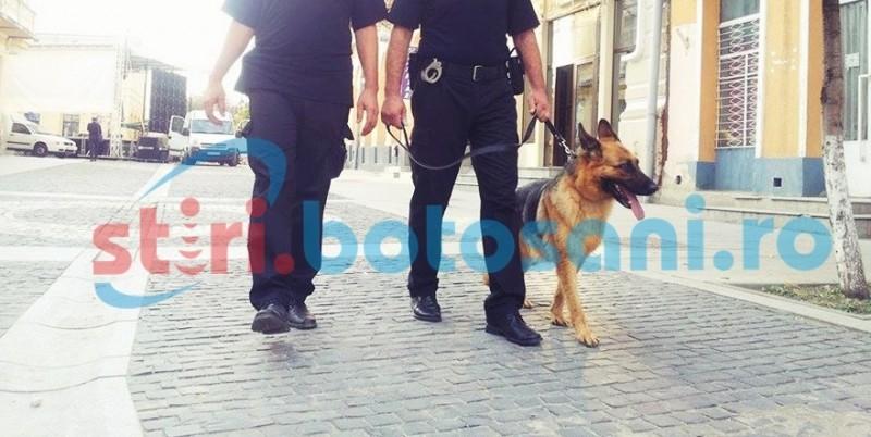 Patrule cu câini băgate în Centrul Vechi pentru calmarea romilor!