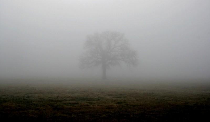 Pentru a treia zi consecutiv, Cod galben de ceață la Botoșani