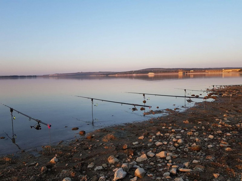 Pescuitul comercial în râul Prut și lacul de acumulare de la Stânca-Costești ar putea fi interzis printr-o nouă petiție lansată în mediul virtual