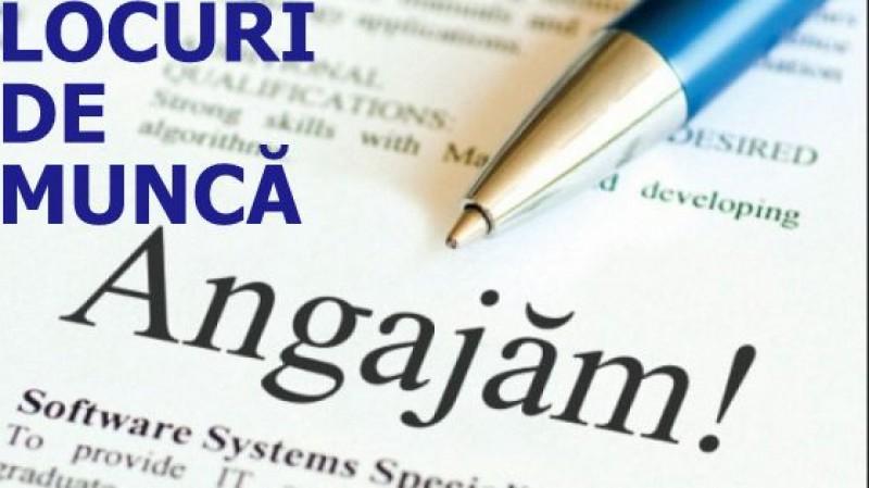 Peste 1000 de locuri de muncă vacante în județul Botoșani. Ce cursuri de calificare oferă AJOFM