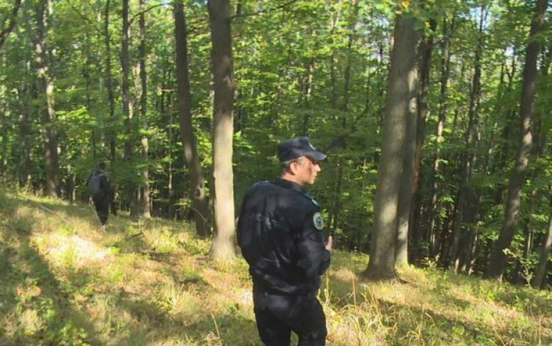 Peste 20 de oameni, mobilizaţi pentru a găsi un culegător de bureţi din Botoșani, rătăcit în pădure!