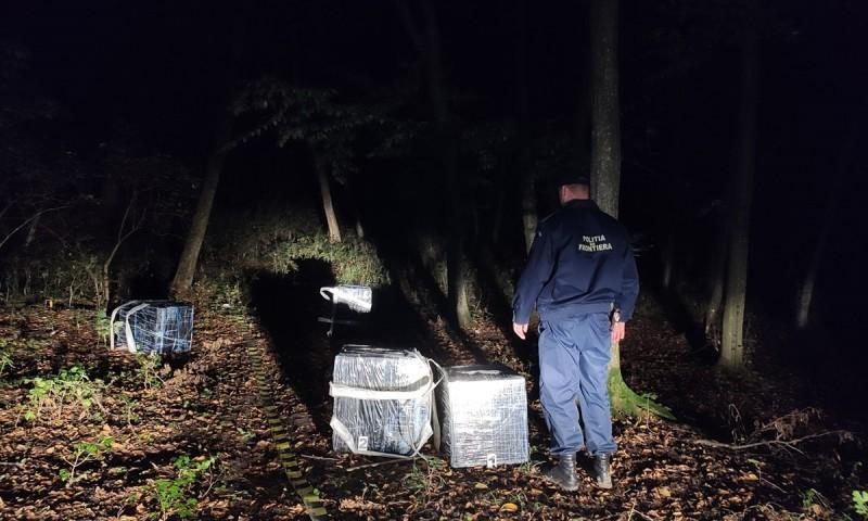 Peste 6000 de pachete de țigări de contrabandă descoperite de polițiștii de frontieră botoșăneni