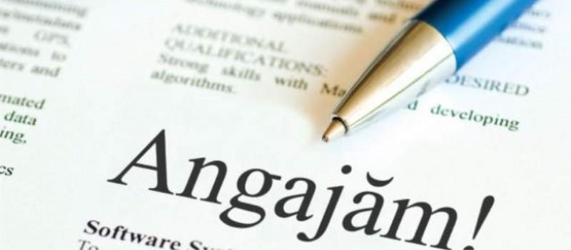 Peste 700 de locuri de muncă vacante în această săptămână, pentru județul Botoșani!