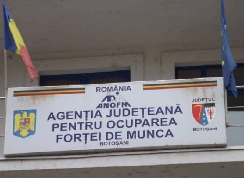 Peste 800 de posturi disponibile în Botoșani, în această săptămână