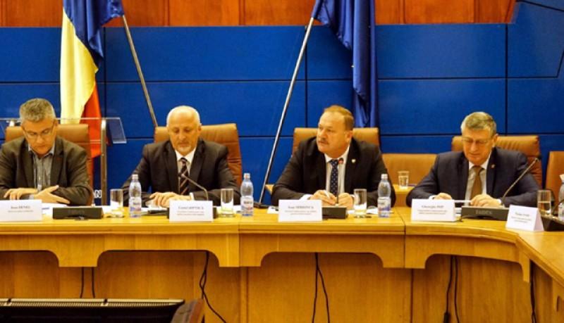 Pleiadă de miniștri săptămâna viitoare la Botoșani