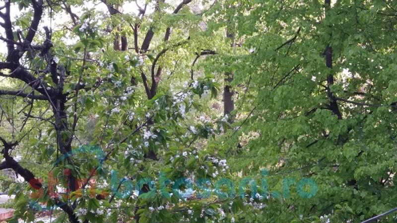 Ploi şi temperaturi scăzute, anunţate de meteorologi pentru judeţul Botoşani