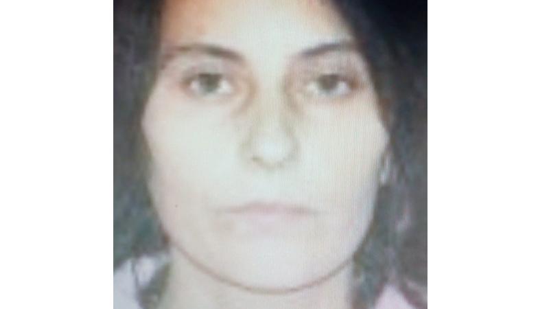 Polițiștii caută o femeie din Coțușca dispărută de două zile