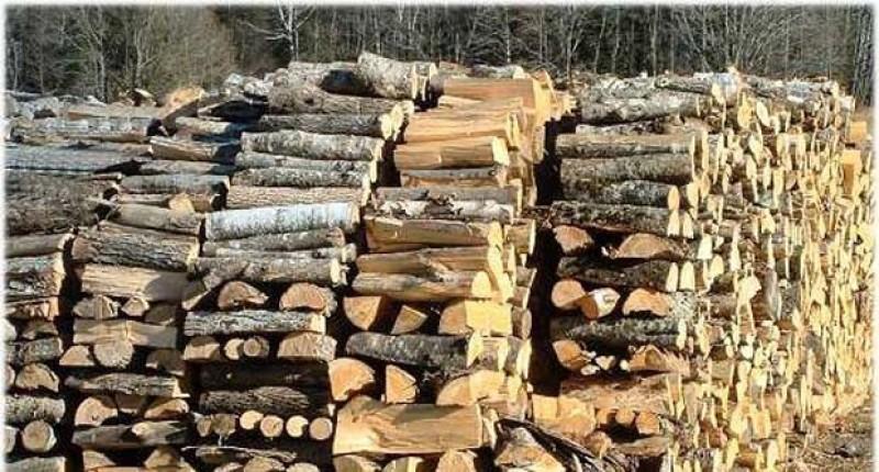 Prețul lemnului de foc a crescut cu 50% în ultimii 2 ani. Jumătate din gospodăriile din România se încălzesc cu lemne.