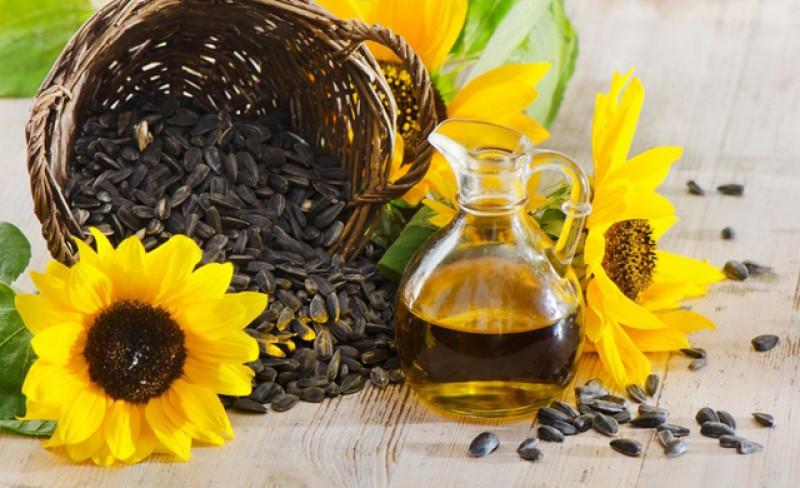 Prețul uleiului și al făinei de porumb va crește în prima parte a anului viitor. Fermierii vor declararea stării de calamitate în agricultură