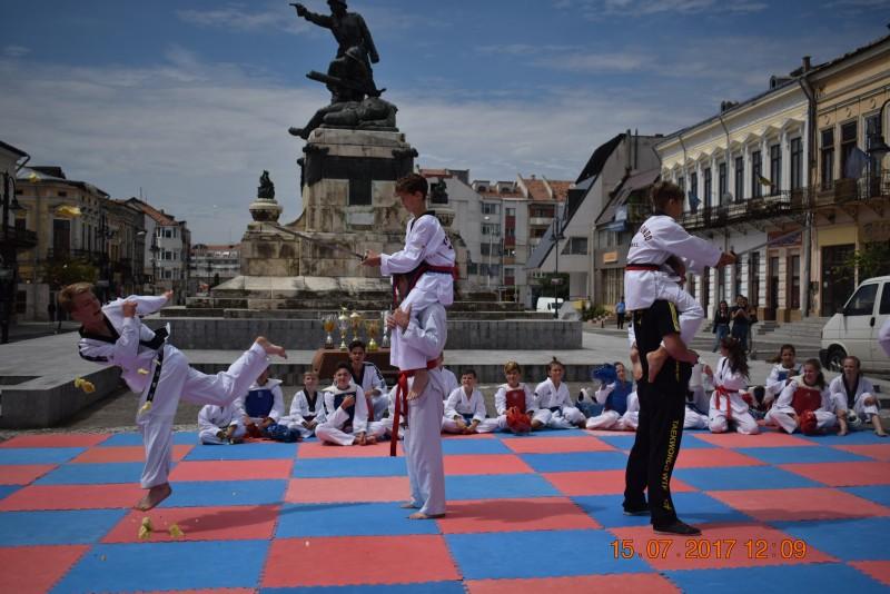 Program demonstrativ de Taekwondo WTF! FOTO