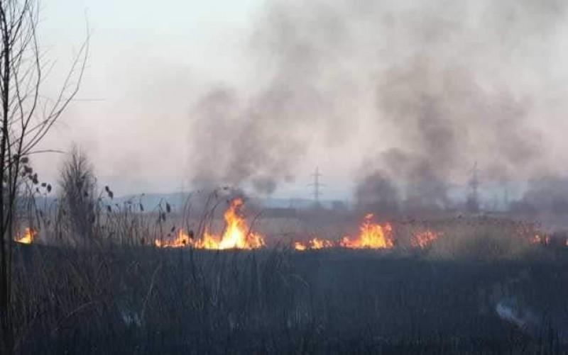 Protecția Mediului din Botoșani atrage atenția asupra riscului incendierii vegetației uscate