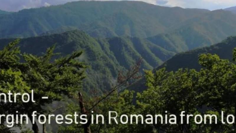 Protest în fața Comisiei Europene contra defrișărilor din România