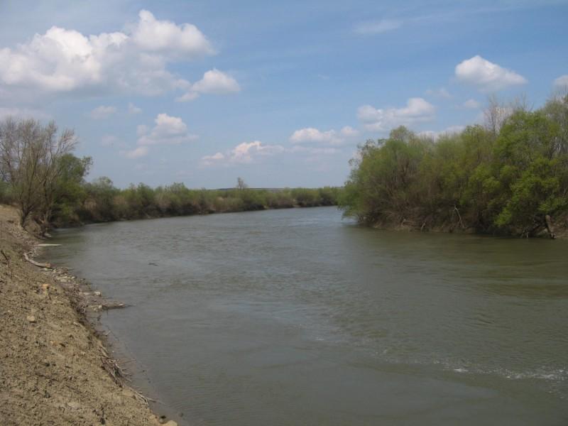 Cotele râului Prut la intrarea în ţară, în scădere