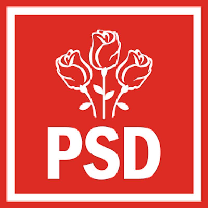 PSD Botoșani anunță depunerea candidaturii pentru Primăria comunei Vlăsinești