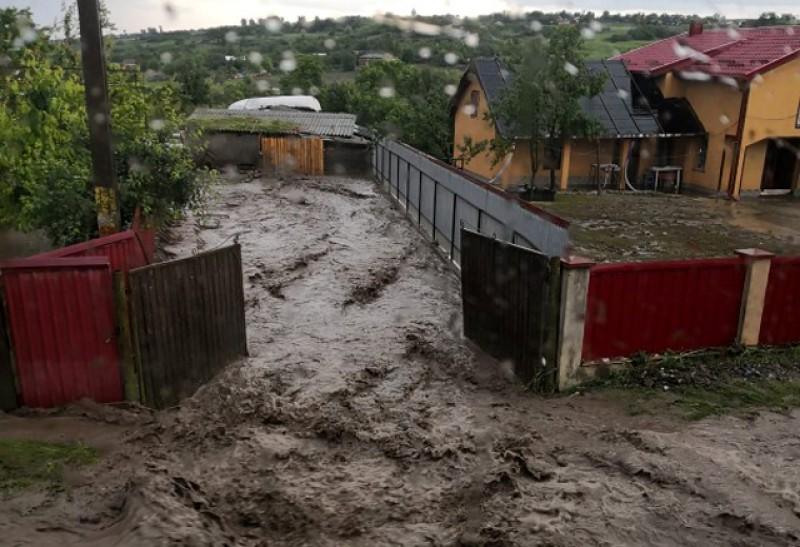 PSD Botoșani: Inundațiile au făcut ravagii în Botoșani, în timp ce PNL a crescut numărul de subprefecți care taie frunză la câini!