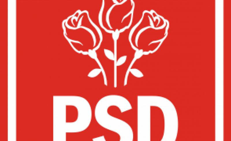 """PSD: Toate organizatiile, cu exceptia celor din Timis si Caras-Severin, se """"desolidarizeaza de lovitura de stat"""" de la Guvern"""
