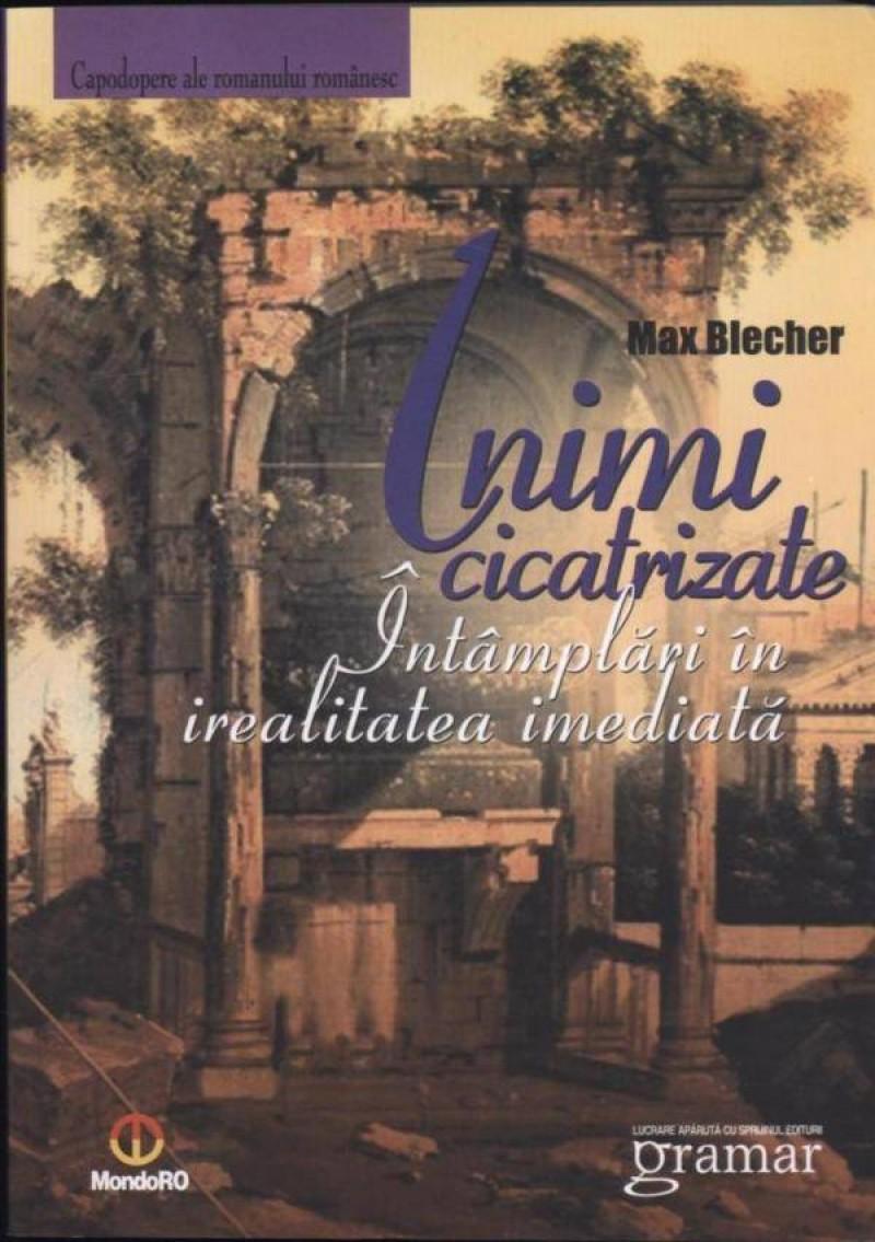 """""""Inimi cicatrizate"""", un roman care ne scoate din comoditatea vieții date!"""