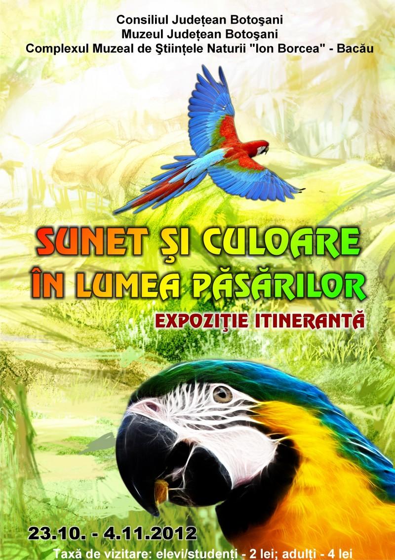 """""""Sunet si culoare in lumea pasarilor"""", la Muzeul Judetean Botosani"""