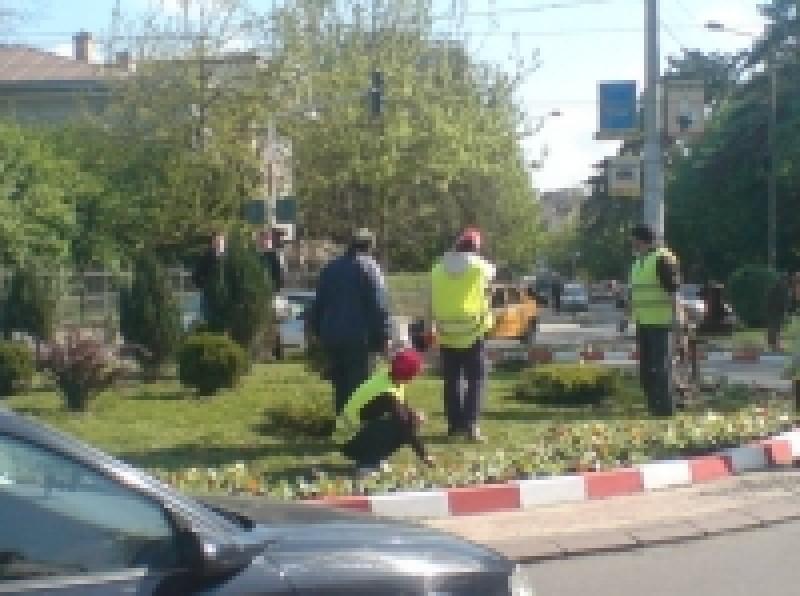 """Vom amenaja grădini frumoase în sensurile giratorii"", spune primarul"