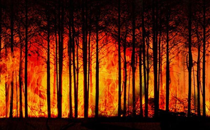 Raport al experţior ONU: Tot ce e mai rău la nivel climatic abia de acum urmează să vină