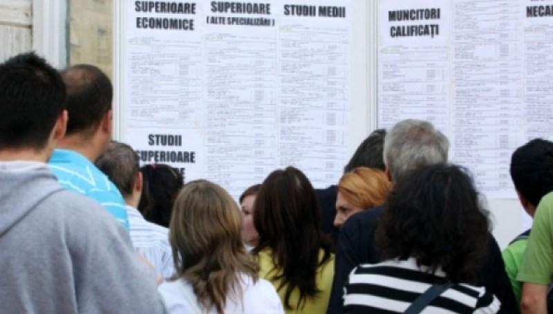 Rata şomajului înregistrată la Botoșani în luna ianuarie 2020: 2,62%. Ponderea cea mai mare o au cei cu studii primare