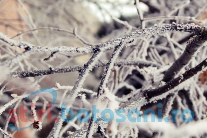 Record de temperatură negativă, înregistrat la Botoșani!